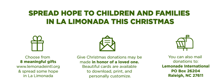 Give Christmas Options   Lemonade International