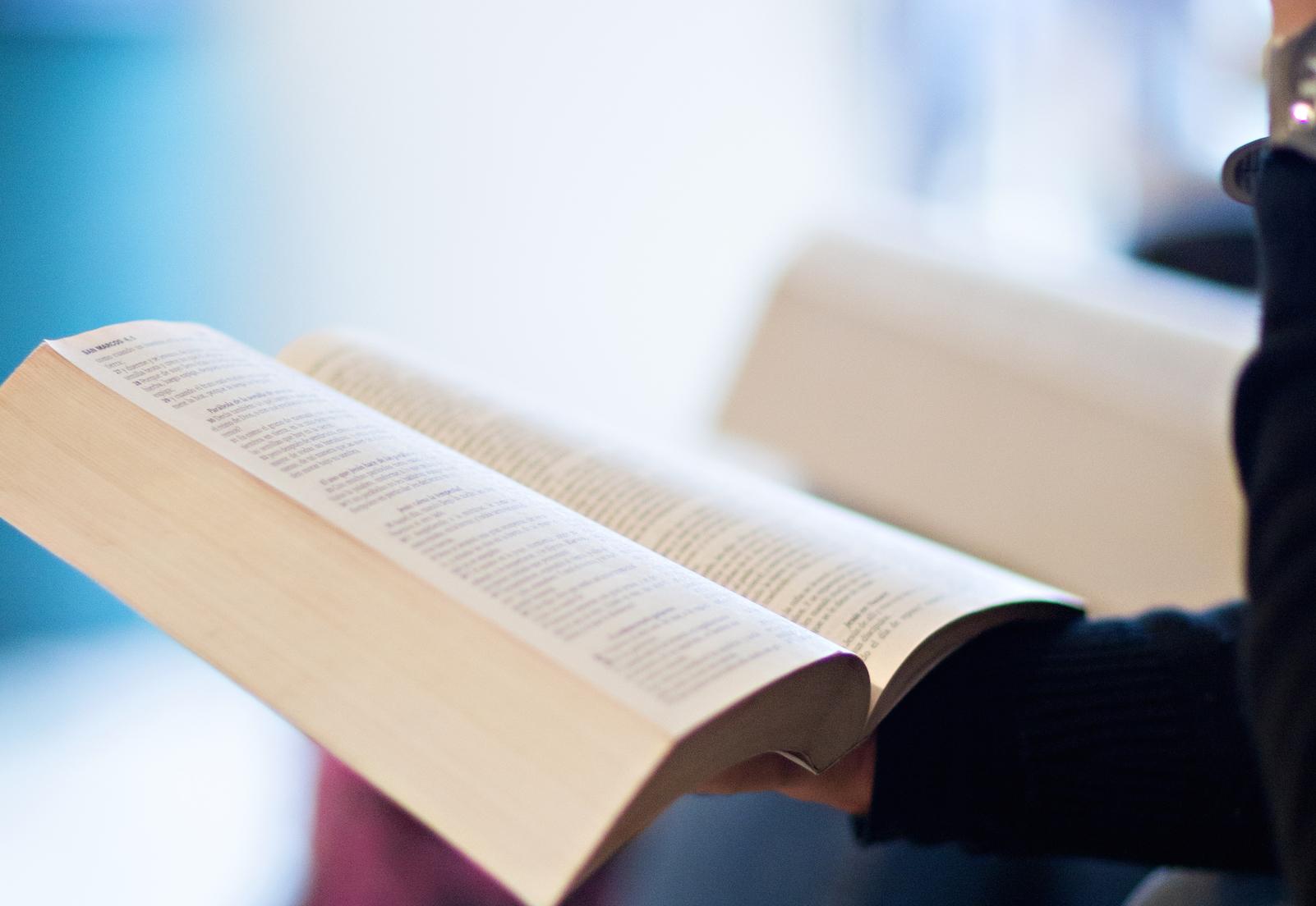 Home Bible Study | Lemonade International
